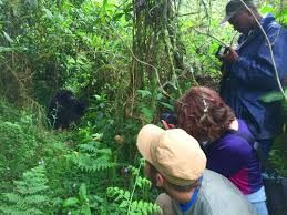 Rwanda tourism plays an important role in saving post-genocide country