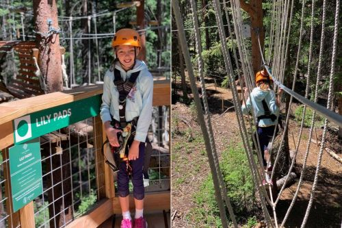 The Lost Forest: Up the Gondola from the Limelight Snowmass