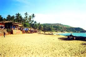 Goa ports minister speaks against imposing stricter measures for tourists in the state