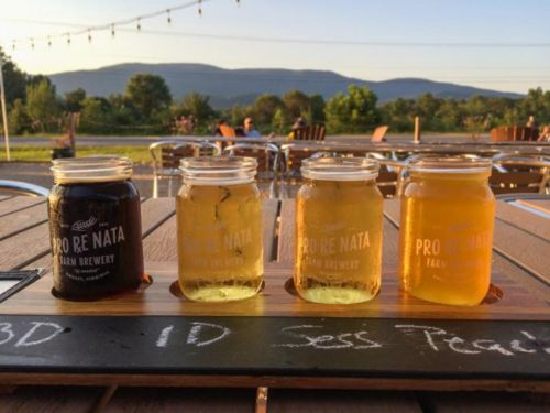 Five Ways to Enjoy Virginia Craft Beer Month this August