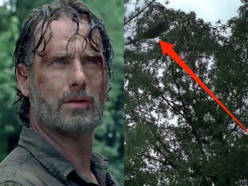 'The Walking Dead' actor shares his best guess on what's up with that mysterious helicopter we keep seeing