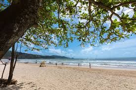 Phuket Sustainable Tourism Blueprint sees ground breaking 'No Foam No Plastic' initiative