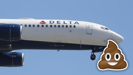 Delta: Sorry, Sir, That You Sat in Dog Shit