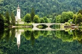 'Apitourism' is the new attraction in Slovenia!