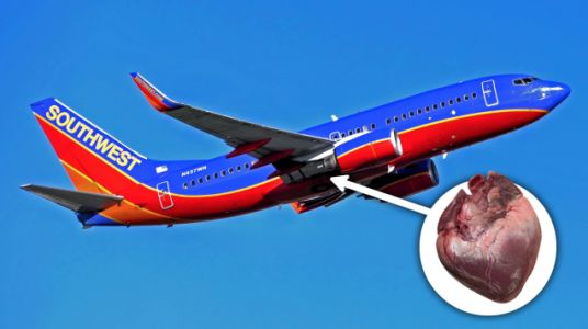 Someone Left a Human Heart on a Southwest Flight and No One Knows Who It Was For