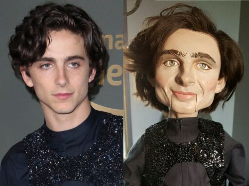 People are losing it over a 'sinister' Timothée Chalamet doll that you can buy for $122,795