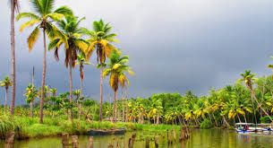 Kerala tourism suffers loss of up to Rs. 25,000 crore