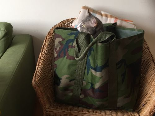 This L.L.Bean tote bag is one of the best purchases I've ever made - and it's only $40