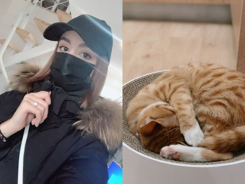 A 21-year-old Canadian woman in Wuhan says she won't evacuate because she can't abandon her cat. Here's what her life is like under lockdown