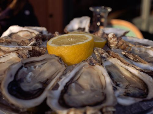 A Florida man died of flesh-eating bacteria after eating raw oysters - here's how concerned you should be