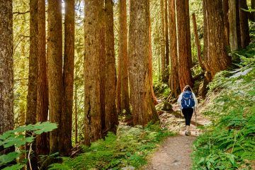 11 of the Best Backpacking Routes in the US