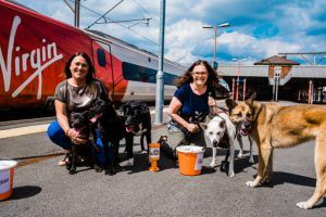 Raffle at Stockport Station to Raise Funds for Homeless Dogs' Charity