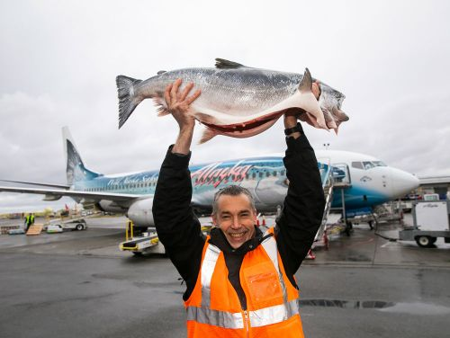 Copper River salmon 2019: First fish are the stars on the red carpet in Seattle