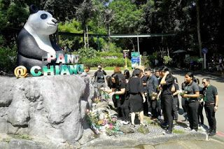 Chinese experts to probe panda Chuang Chuang's death in Thai zoo