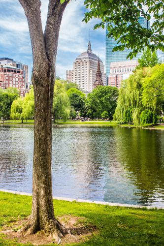 17 Legendary Things to do in Boston MA with Kids