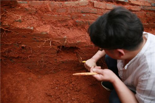 1,000-year-old tomb of couple excavated in China