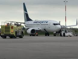 Hydraulic issue forces plane to emergency land in Hamilton