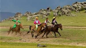Mongolia to organise horse festival during winter
