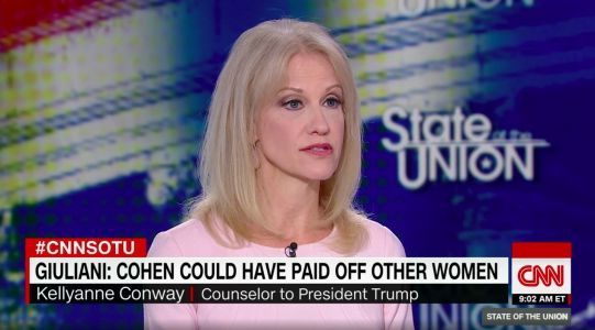 'You just want that to go viral': Kellyanne Conway and Jake Tapper go toe-to-toe on Trump's Stormy Daniels saga