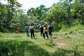 Narsapur forest becomes the new tourist attraction