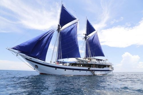 Indigo V Expeditions Partners With SeaTrek Sailing Adventures to Clean Indonesian Seas of Microplastics
