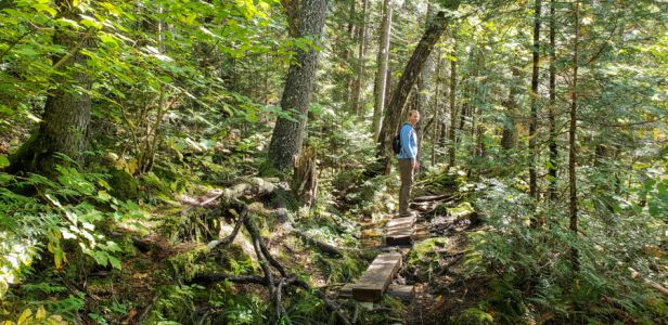 Maine Huts and Trails Hiking