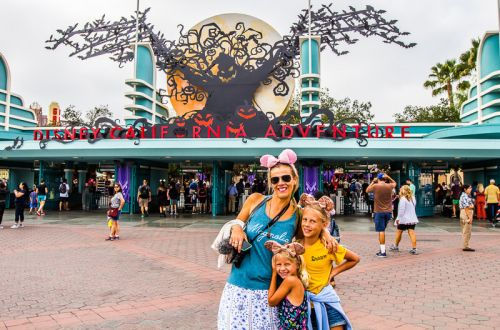11 Year Old's Best Tips for Disney California Adventure Park