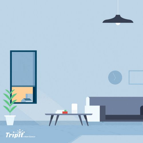 TripIt Announces New Smart Speaker Commands