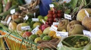 Feast of the Senses, premier tropical food event of North Queensland