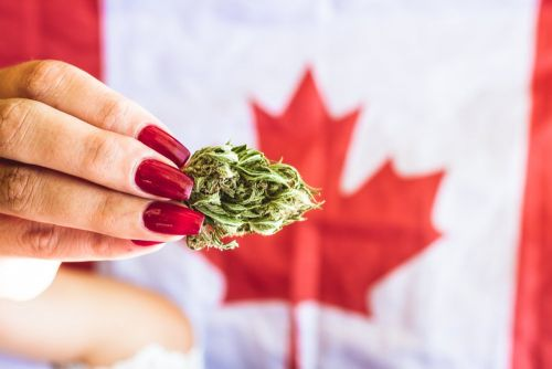 Canada's Senate approves legalizing recreational marijuana use