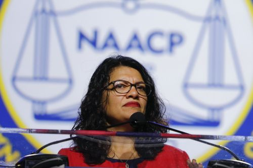 'May God ruin him': Rep. Rashida Tlaib's grandmother reacts to Trump's tweet about her not wanting to see the congresswoman after she was barred form Israel