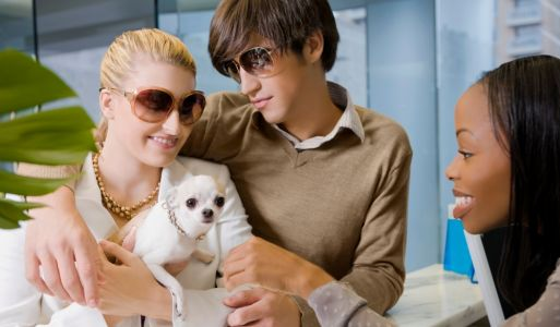 14 Luxury Pet-Friendly Hotels in the United States