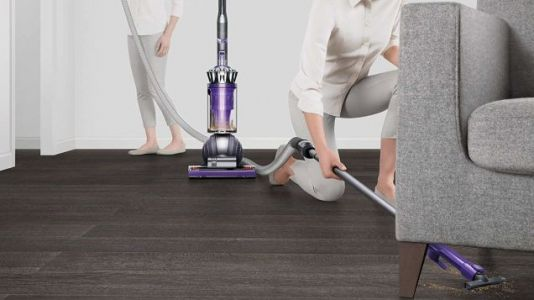 Suck Up the Savings On This Powerful, Pet Hair Devouring Dyson Ball Animal 2