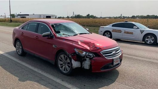 South Dakota AG May Have Been Scrolling Through Radical Right Conspiracy Site During Hit-And-Run