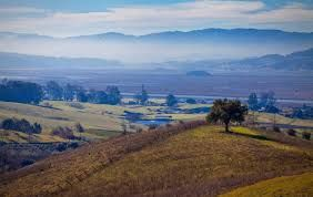 Sonoma County in California takes attempt to lure tourists after wildfire