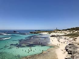 Rottnest Island visitors to enjoy discounted fares for afternoon return trips