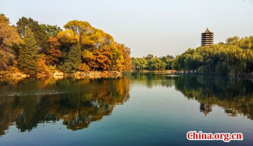 Peking University in Fall