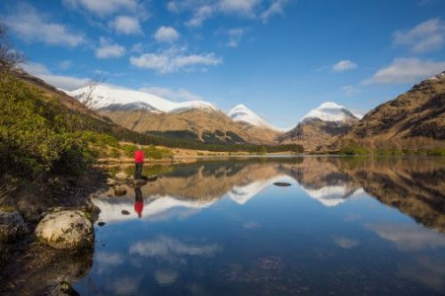 VisitScotland: Alive and well!