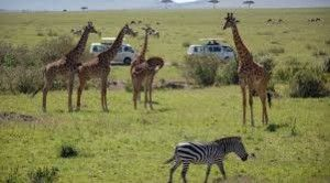 2.1 m international tourists to visit Kenya in 2019